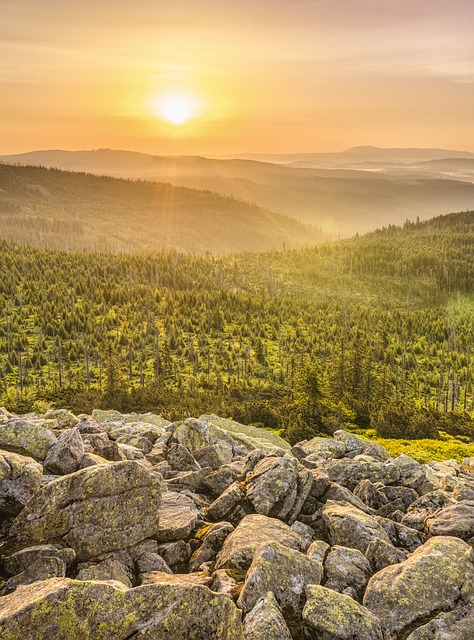 Lusen, Bavarian Forest_Image by FelixMittermeier from Pixabay (free use)